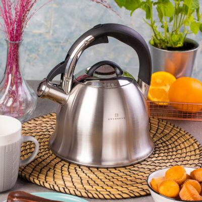 Whistling kettle satin 2.5l EB-8825